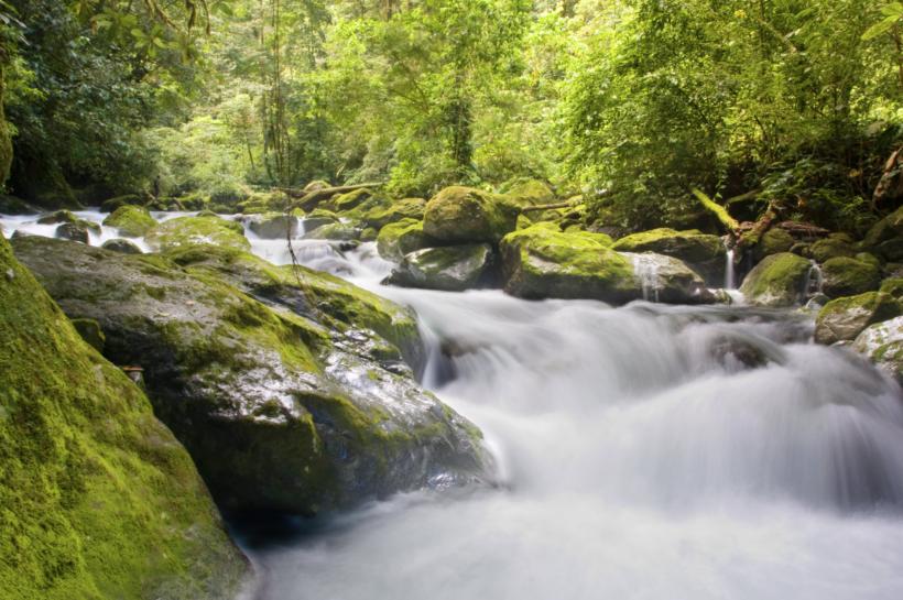 Posvetovanje o noveli Zakona o vodah pri predsedniku RS