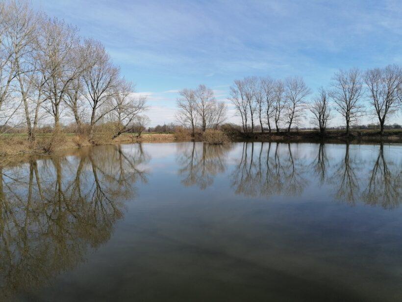 Webinar: Demokratično odločanje, upravljanje in menedžiranje voda